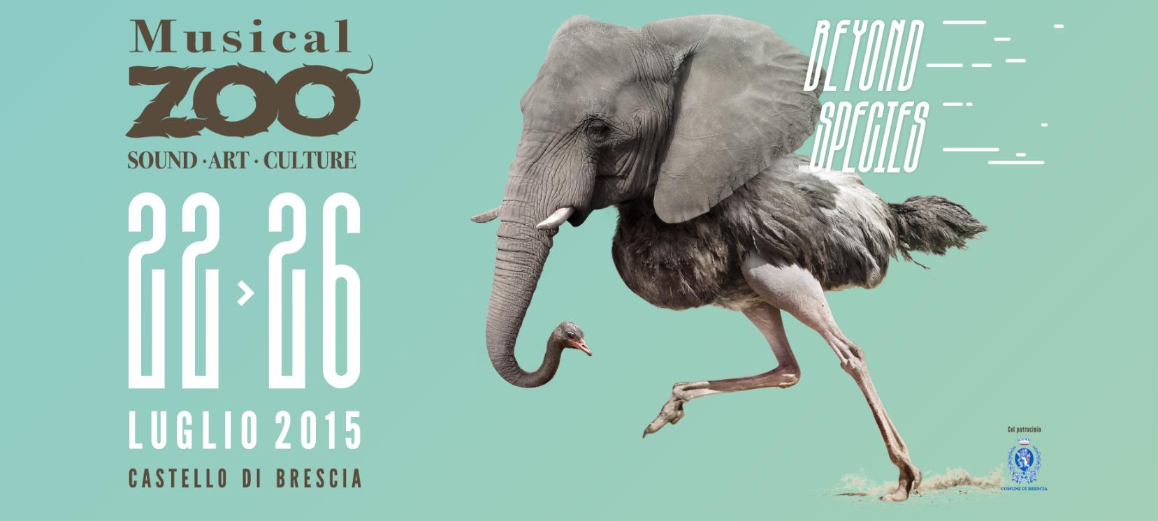 musica-zoo